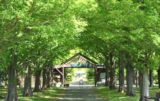 「生態系公園」の写真